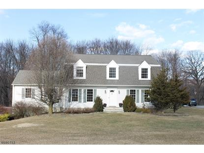 1 Millstone Ct  Sparta, NJ MLS# 3366345
