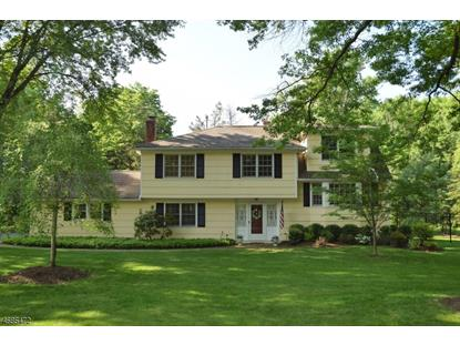 97 Lyons Pl  Bernards Township, NJ MLS# 3366612