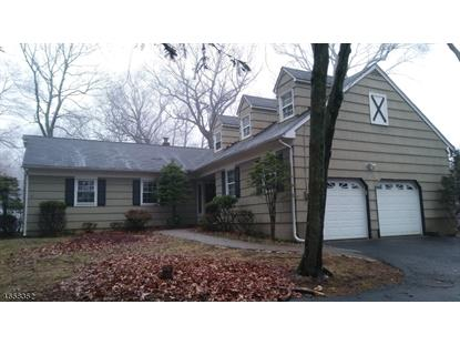 3 Arlyn Ln  Randolph, NJ MLS# 3370062