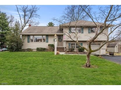 31 Mill Rd , Morris Township, NJ