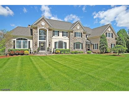5 Deer Ridge Rd , Bernards Township, NJ