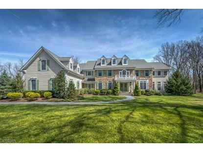 30 Birchwood Dr  Montgomery, NJ MLS# 3375749