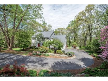 31 Cromwell Dr , Chester, NJ