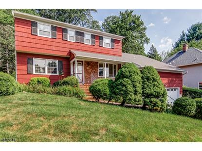 21 Somerset Ave , Bernardsville, NJ