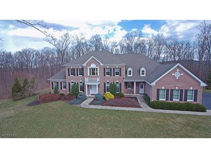 56 Flagstone Hill Rd  Wantage, NJ MLS# 3378774
