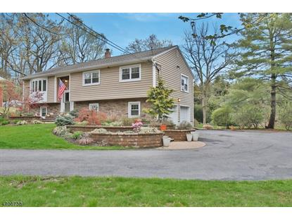 14 Roberts Rd , Washington Township, NJ