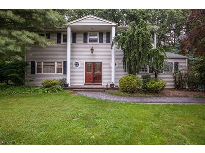 10 BRISTOL CT , East Brunswick, NJ