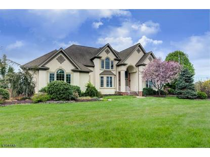 73 Rainbow Hill Rd , East Amwell Township, NJ