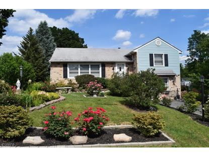 319 New Jersey Ave  Pohatcong Township, NJ MLS# 3383098