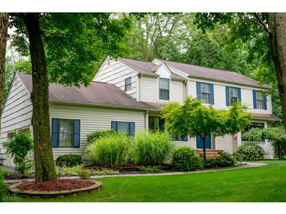 15 Orchard Pl  Bernards Township, NJ MLS# 3384374