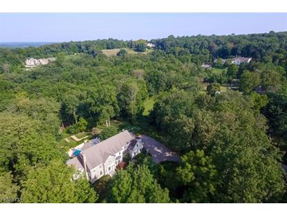 51 Post Kennel Rd  Bernardsville, NJ MLS# 3384905