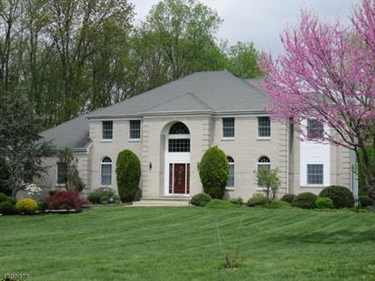 1 Ireland Brook Dr  South Brunswick, NJ MLS# 3385973