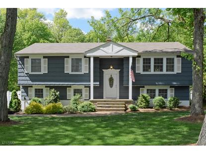 11 Kitchell Pl , Morris Township, NJ