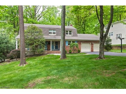83 Webster Dr  Berkeley Heights, NJ MLS# 3387882