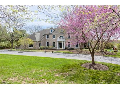 157 Bedens Brook Rd  Montgomery, NJ MLS# 3389032