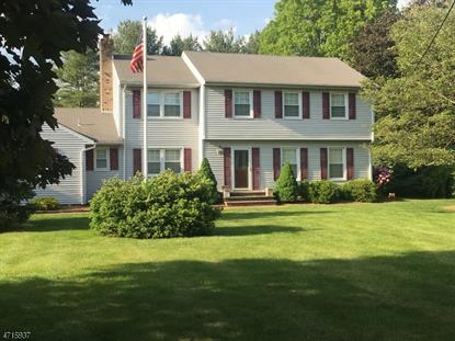 141 Lake Rd , Morris Township, NJ