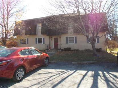 254 Sussex County Road 653  Montague Township, NJ MLS# 3389863