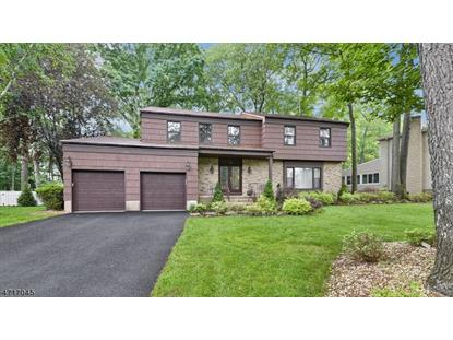 146 Webster Dr , Wayne, NJ