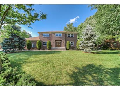11 Pheasant Way  Florham Park, NJ MLS# 3392589