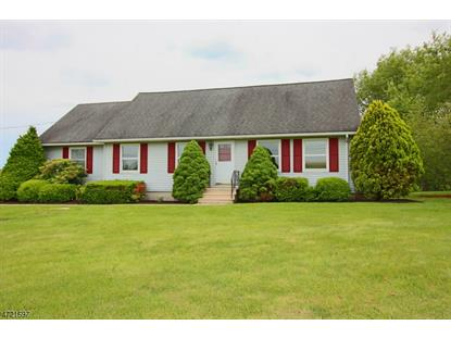 29 ROSEMONT-RINGOES RD , East Amwell Township, NJ