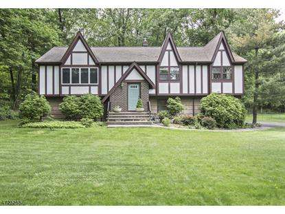 243 Lake Rd , Morris Township, NJ
