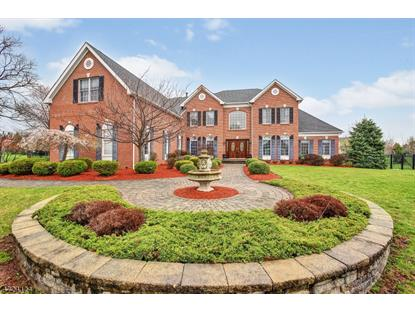 37 Meadow Lark Ln , Montgomery, NJ
