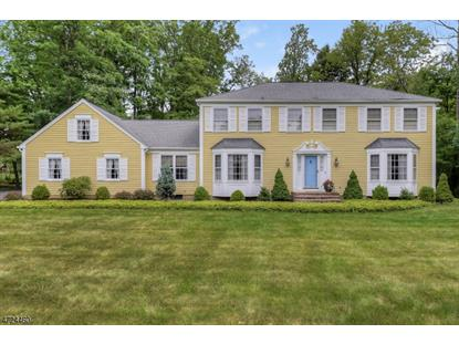 40 Berkeley Cir , Bernards Township, NJ