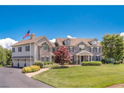 5 Rolling Meadow Ct , Washington Township, NJ
