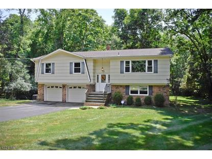 54 Pleasant Hill Rd , Randolph, NJ