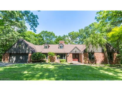 51 Old Stage Coach Rd  Byram Township, NJ MLS# 3399631