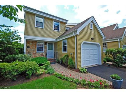 17 Pilgrim Ct , Morris Township, NJ