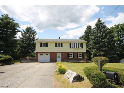 3 Haines Ct , Franklin, NJ