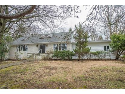 7 Robinwood Drive  Little Falls, NJ MLS# 3401274