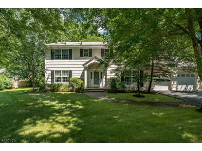 3 Murphy Cir  Florham Park, NJ MLS# 3403327