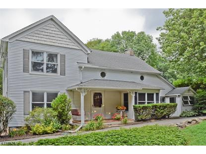 131 Combs Hollow Rd  Randolph, NJ MLS# 3403352