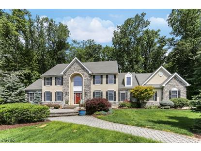 10 Allyson Ct , Washington Township, NJ