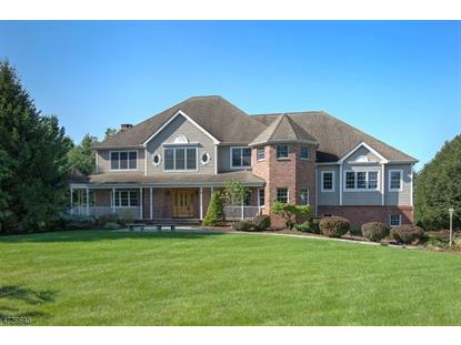 1 SWACKHAMER RD , Readington Twp, NJ