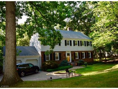 55 Ketch Rd , Morris Township, NJ