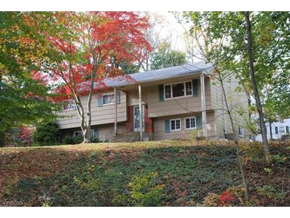 171 Park Ave  Randolph, NJ MLS# 3414845