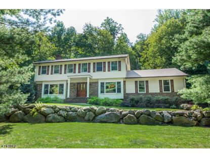 44A ROCKLEDGE RD  Montville Township, NJ MLS# 3415595