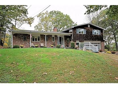 10 Summit Ter  Sparta, NJ MLS# 3416277
