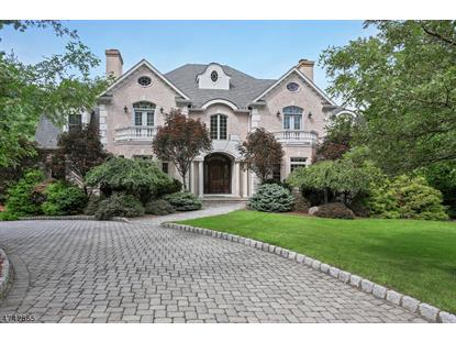 20 Knightsbridge  Watchung, NJ MLS# 3417211