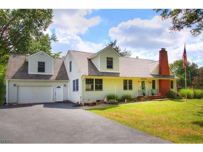 466 Bayberry Rd , Bridgewater, NJ
