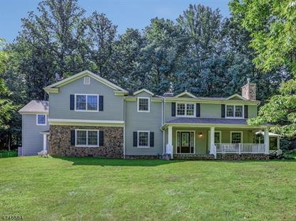 8 Cedar Ct , Washington Township, NJ