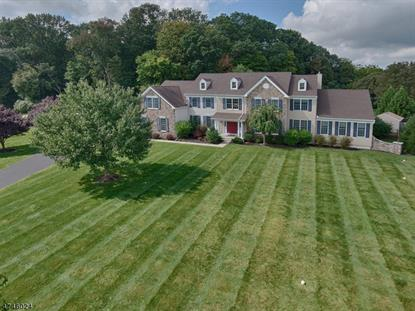 11 Scenic Hills Dr , Blairstown, NJ