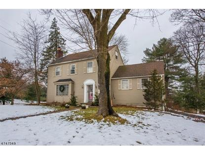 42 Ridge Rd  Little Falls, NJ MLS# 3419669