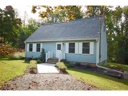 261 Mount Airy Harbourton Rd  West Amwell, NJ MLS# 3419883