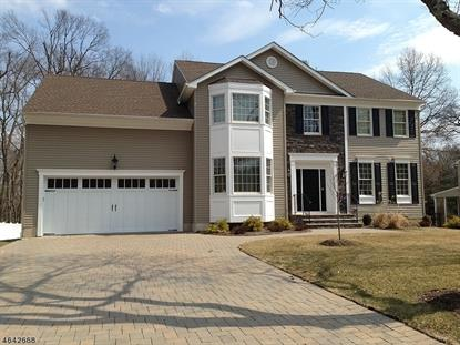 1 Seneca Ct , Mount Olive, NJ