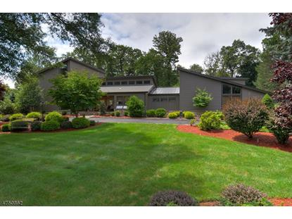 13 Cain Cir  Watchung, NJ MLS# 3422736