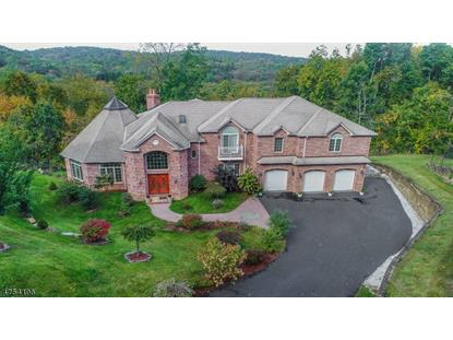35 Roc Etam Rd  Randolph, NJ MLS# 3425247